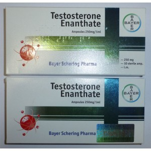 testosterone-enanthate-bayer-10-amps-10x250mg-1ml